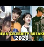 Heartbreaking Korean Celebrity Couple Breakups 2020
