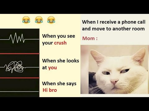 Funny Memes That Will Make You Laugh #86 | Funny Meme | Dank Meme | #shorts Meme | Relatable Memes