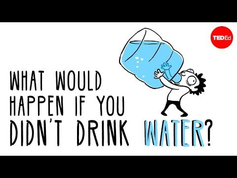 What would happen if you didn't drink water? – Mia Nacamulli