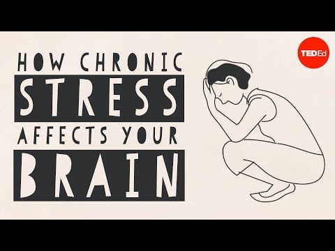 How stress affects your brain – Madhumita Murgia