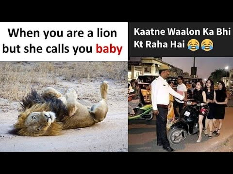 Funny Memes That Will Make You Laugh #343 | Funny Meme | Dank Meme | Fun Meme | Relatable Memes