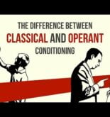 The difference between classical and operant conditioning – Peggy Andover