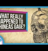 What Really Happened to Phineas Gage?