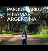 [4K] Travel to Argentina and Explore Parque Cariló with Mercedes as Your Tour Guide 🇦🇷