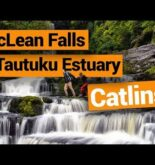 Travelling the Catlins: McLean Falls & Tautuku Estuary –  New Zealand's Biggest Gap Year