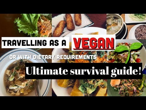 ULTIMATE SURVIVAL GUIDE TO TRAVELLING AS A VEGAN (or with dietary requirements)| My 5 crucial tips!