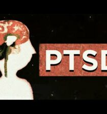 The psychology of post-traumatic stress disorder – Joelle Rabow Maletis