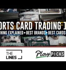 Sports Card Investing 101   Best Brands   Best Boxes   Best Sports Cards   Card Collecting Lingo