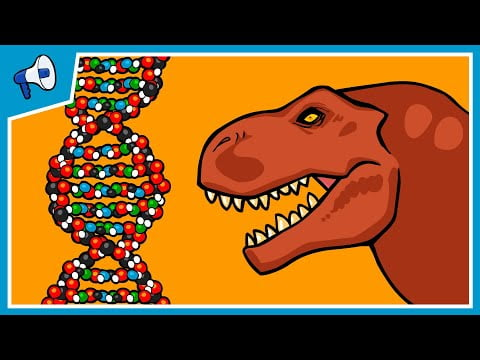 What is DNA and How Does it Work?