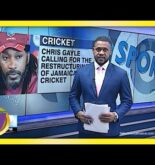 Jamaica's Cricket in Need of Restructuring – Chris Gayle | TVJ Sports News