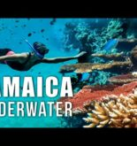 JAMAICA SNORKELING. Does Jamaica have good snorkeling? ft JESSICA CARGILL