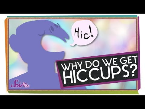Why Do We Get Hiccups?   Body Science for Kids