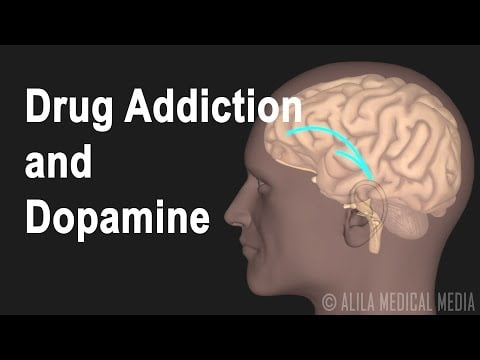 Mechanism of Drug Addiction in the Brain, Animation.