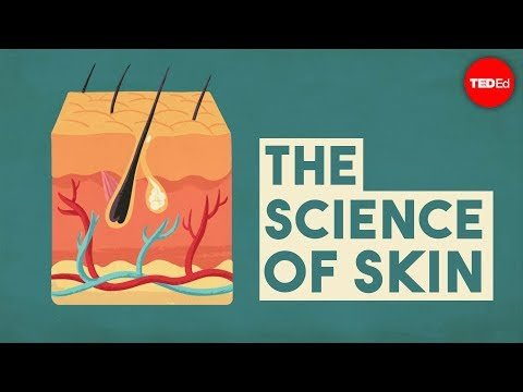 The science of skin – Emma Bryce