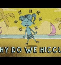 Why do we hiccup? – John Cameron