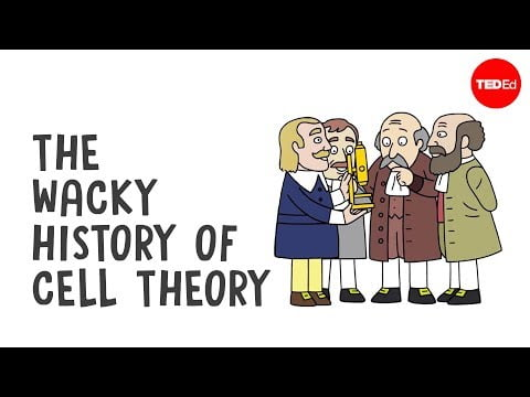 The wacky history of cell theory – Lauren Royal-Woods