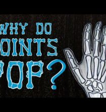 Why do your knuckles pop? – Eleanor Nelsen