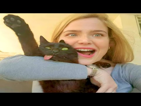 FUNNIEST CAT MEMES COMPILATION OF 2020 – 2021 PART 56 (FUNNY CATS)