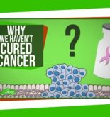 Why We Haven't Cured Cancer