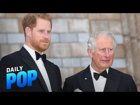 """Prince Harry Will """"Break the Cycle"""" on How He Was Raised   Daily Pop   E! News"""