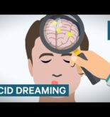 How Lucid Dreaming Works
