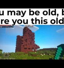 BEST MINECRAFT MEMES OF MAY