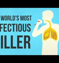 What makes tuberculosis (TB) the world's most infectious killer? – Melvin Sanicas