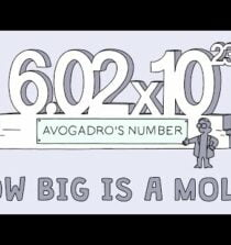 How big is a mole? (Not the animal, the other one.) – Daniel Dulek
