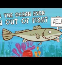Will the ocean ever run out of fish? – Ayana Elizabeth Johnson and Jennifer Jacquet