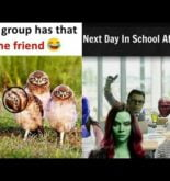 Funny Memes That Will Make You Laugh Like Mad   What A Meme #493