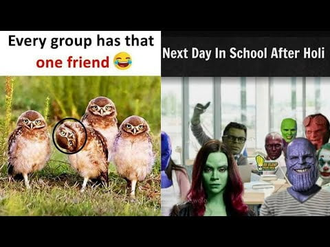 Funny Memes That Will Make You Laugh Like Mad | What A Meme #493