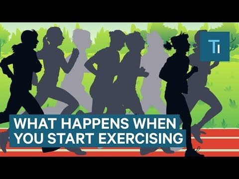What Happens To Your Body When You Start Exercising Regularly   The Human Body