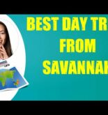 BEST DAY TRIPS FROM SAVANNAH & Travel Tips