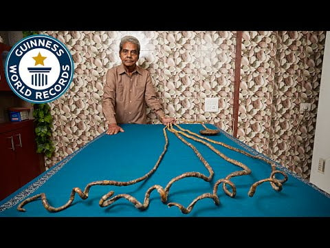 Longest fingernails on a single hand (ever) – Meet The Record Breakers