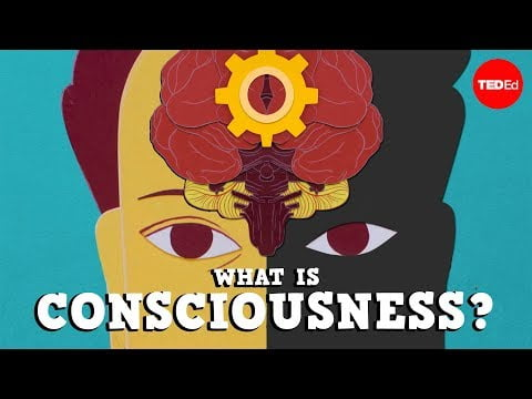 What is consciousness? – Michael S. A. Graziano